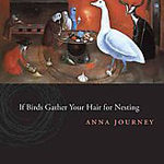 A photo of the cover for Birds Gather Your Hair for Nesting by Anna Journey