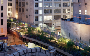 Empire State of Mind: The High Line & Artichoke Pizza