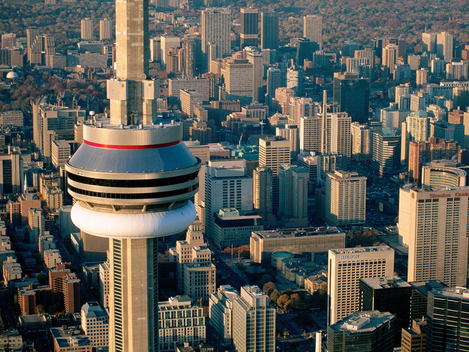 Record Shops, Dead Frogs & Niagara Falls