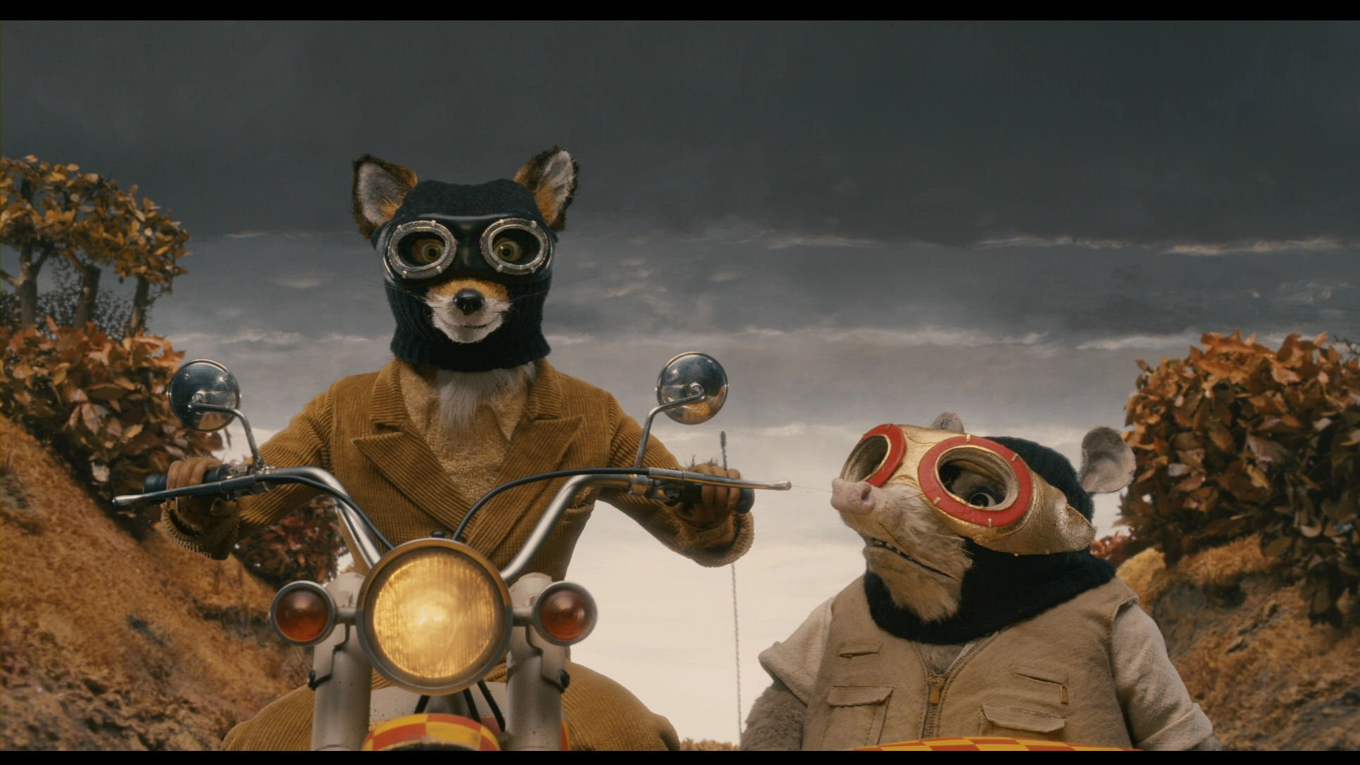 Now Screening at the Monmouth Cinema Club: Royal Tenenbaums (2001) and Fantastic Mr. Fox (2009)