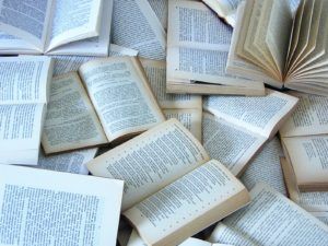 Must-Reads for the Spring Semester